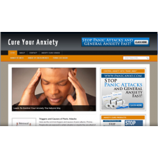 WP Niche Blog: Anxiety
