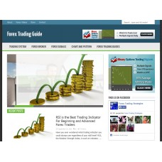 WP Niche Blog: Forex Trading