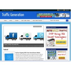 WP Niche Blog: Traffic Generation